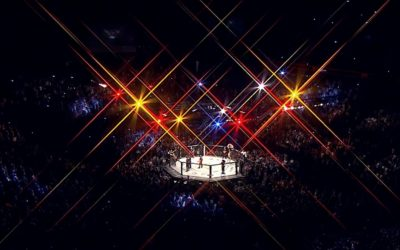 """UFC – From """"Human Cockfighting"""" to the Fastest Growing Sports Organization in the World"""